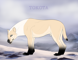 Silvers winter day 33561 by TotemSpirit