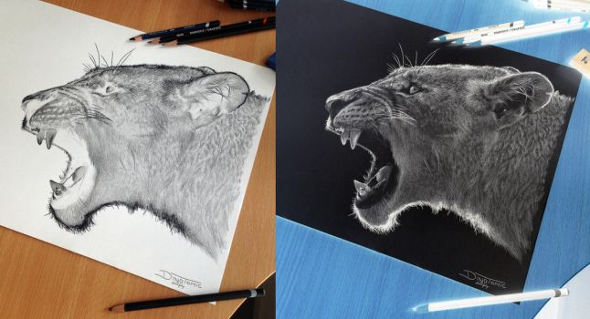 Puma Inverted Pencil Drawing by AtomiccircuS