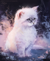 Fluffy Kitten by PegaNeko