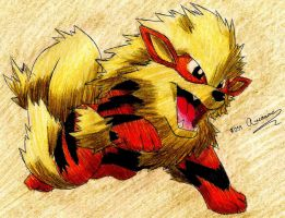 Arcanine by Macuarrorro