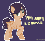 (OPEN) Pony Adopt! by Sparkle-Wing-Doodles