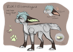 OUTDATED (bc it's ugly XDD) [FURSONA REF SHEET] by R-ukito