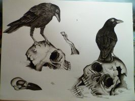 black and grey crows by bishop808