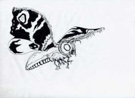 Mothra by Scotwith1T