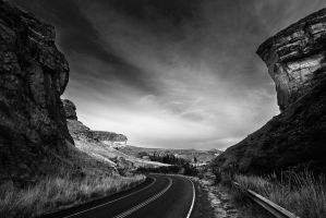 Golden Gate nation park by carlosthe