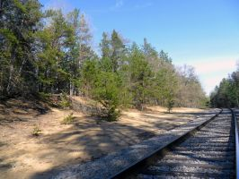 Dune Area Along Railroad Tracks by DaLeahWeathers