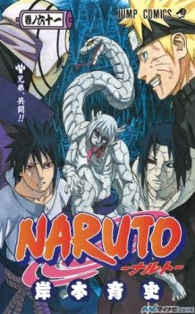 Naruto vol. 61 by Thecmelion