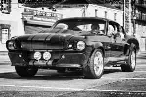shelby GT500 by haggins11