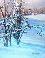 chickadees by traits