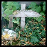 Pussie Toe's Grave by kandi