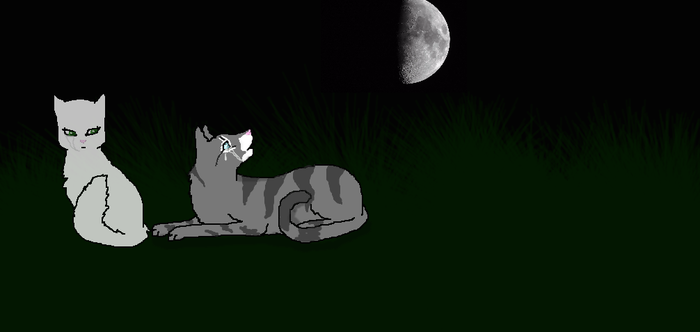 jayfeather and halfmoon- remake by ZombieWolf62