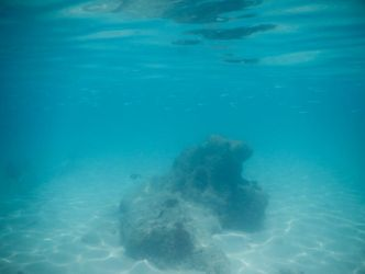 Bermuda 058  Underwater Stocks by FairieGoodMother