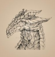 Bearded Dragon bust sketch by drakoncast