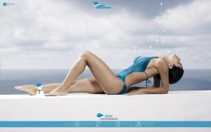 Wallpaper Calendars 2010 by moneyzeal