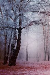 Premade Background 7 by maiarcita