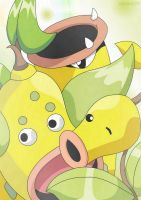 ..::Evolutions Bellsprout::..