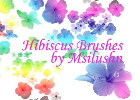 Hibiscus - Brushes by Msilushn