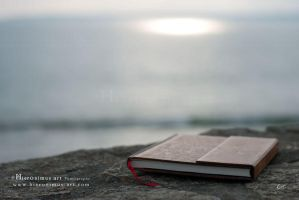 The book of light by Hieronimus-art