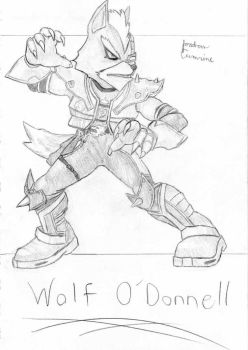 SSBB - Character - Wolf by Wesker-Wolf
