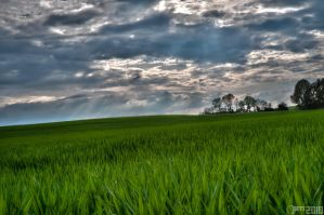 Field and sky by PiTRiS