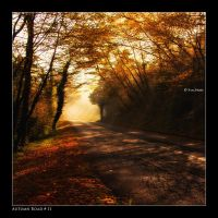 Autumn Road_11 by Marcello-Paoli
