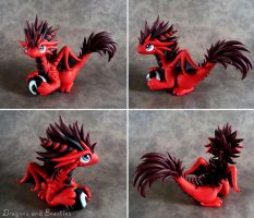 Fluffy Red Dragon by DragonsAndBeasties