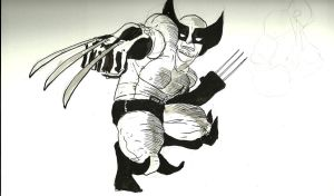 Wolverine guy by jhames34
