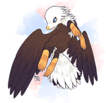 Large: Bald Eagle by Pillowing-Archive