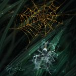 Gold Webs by jasric