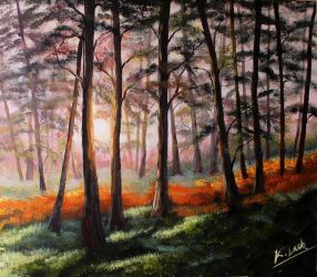 Sunrise in the forest by Kasia1989