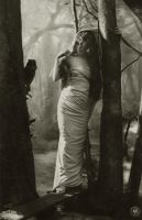 Vintage woman in the forest 002 by MementoMori-stock