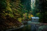 'Cabin on the river' - not by kayaksailor