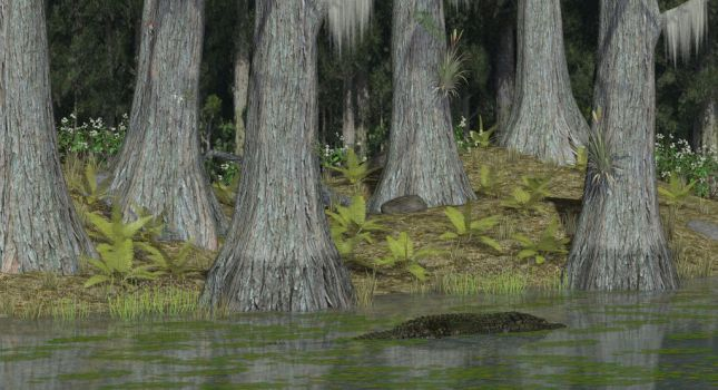Big Cypress Habitat by KenGilliland