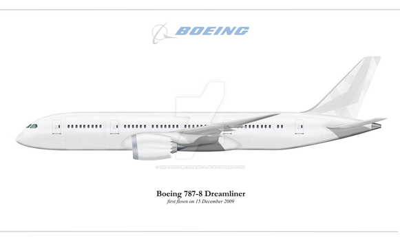Boeing 787 Dreamliner by graphicamechanica