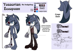 Yossorian the hedgehog by lizathehedgehog