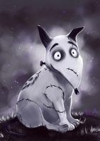 Sparky by Mellodee