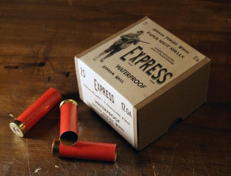 Shotgun Shells by d1960
