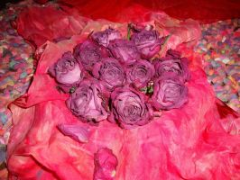 Petals on Silk by ronniengirls