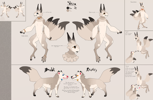 Shiro Ref by acember