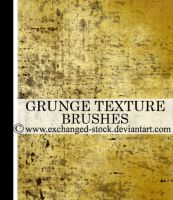 Grungy Texture Brushes by exchanged-stock