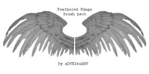 Feathered Wings Brush Pack by advs14u2nv