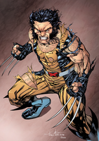 wolverine feral and trashed by SpiderGuile