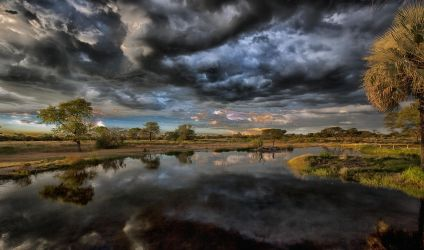 Dawn at the water hole by luethy