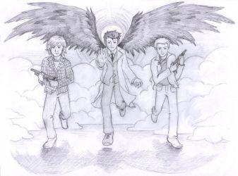 Team Free Will by blackbirdrose