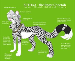New Ref Sheet 2007 by Sethaa