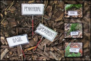 Herb Labels by Ellygator