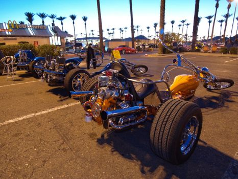 Phoenix Trike Works by Swanee3