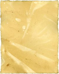 Texture - Tea Paper 27 by shadowgirls-stock