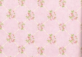 Paisley floral paper stock by laurengee