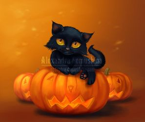 Halloween cat by Sedeptra
